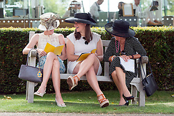 © Licensed to London News Pictures. 31/07/2014. Chichester, UK. Women sit on a bench. Ladies Day at Glorious Goodwood at Goodwood racecourse in Chichester today 31/07/14. Photo credit : Stephen Simpson/LNP