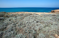 Veduta costa mare adriatico nei pressi dell'aeroporto di Brindisi
