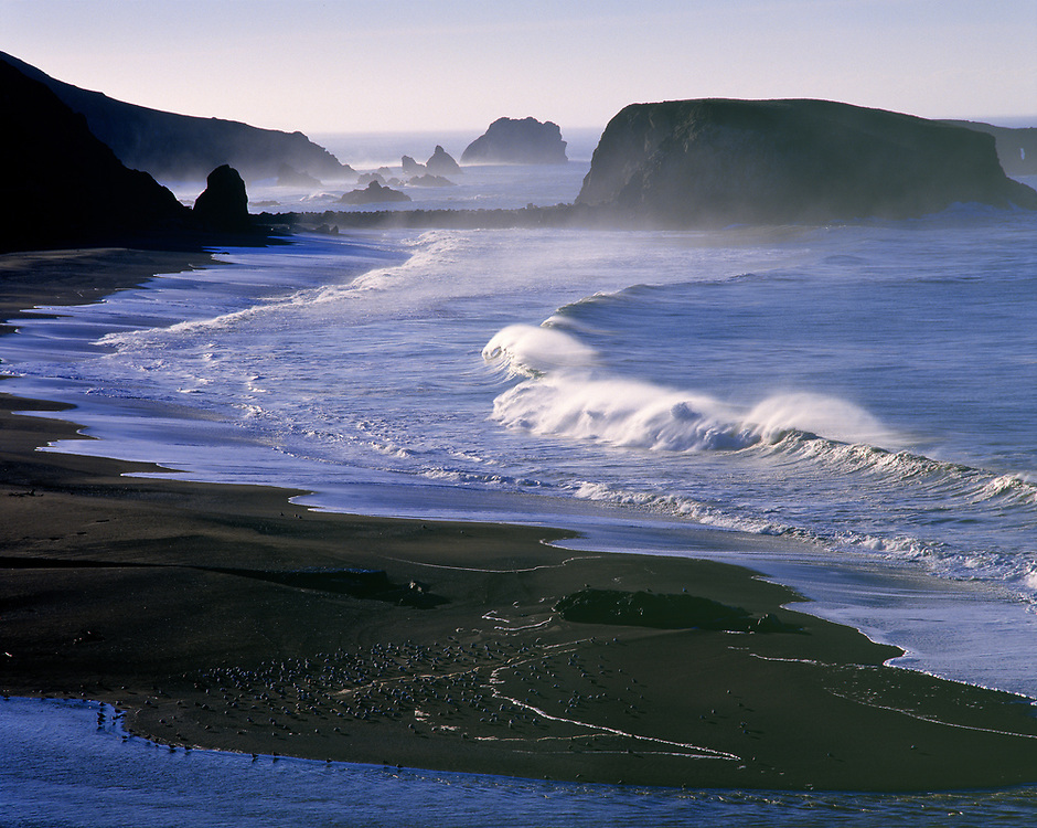 Waves break against the beach near Goat Rock on the Sonoma Coast in northern California.
