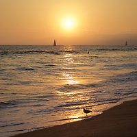 Sunset at Venice beach - a great time to catch a wave, sail under the golden skies or just enjoy the beach at last light.