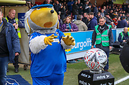 Haydon the Womble about to grab the match ball during the The FA Cup 5th round match between AFC Wimbledon and Millwall at the Cherry Red Records Stadium, Kingston, England on 16 February 2019.