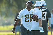 January 28 2016: Minnesota Vikings running back Adrian Peterson during the Pro Bowl practice at Turtle Bay Resort on North Shore Oahu, HI. (Photo by Aric Becker/Icon Sportswire)