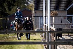 Roos Laurence, BEL, Fil Rouge<br /> CDI3* Opglabbeek<br /> © Hippo Foto - Sharon Vandeput<br /> 23/04/21