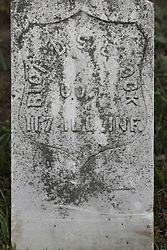 Freemont Cemetery in McLean County, east of McLean.<br /> <br /> Richard Saybrook  117 ILL INF Co A