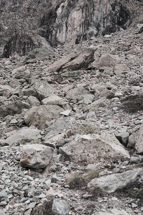 Find the Marmot II