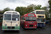 Vintage bus collection during the open day at Wythall Transport Museum on May 1st 2017 in Wythall, England, United Kingdom. The Transport Museum, Wythall is a transport museum just outside Birmingham, at Wythall, Worcestershire.The museum is run by the charity The Birmingham and Midland Motor Omnibus Trust BaMMOT. The museum has three halls, presenting a significant collection of preserved buses and coaches, including Midland Red and Birmingham City Transport vehicles. It is also home to the Elmdon Model Engineering Society EMES who operate the Wythall miniature railway within the grounds of the transport museum, giving rides to public on miniature steam trains.