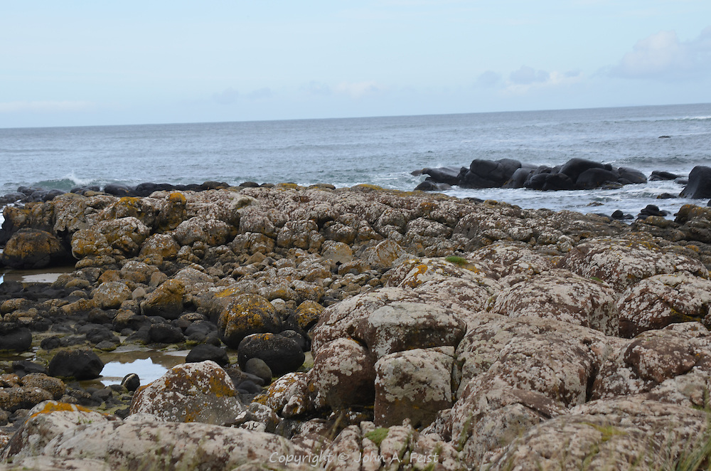 Small tidal pools, lichens and salt on the rocks at the Giant's Causeway, County Antrim, Northern Ireland.