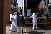 Meat industry workers deliver pork carcasses to a local butchers, on 10th August 2020, in Aylsham, Norfolk, England.