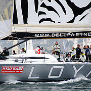 Loyal at the start of the 2009 Rolex Sydney to Harbour Yacht Race in Sydney Harbour