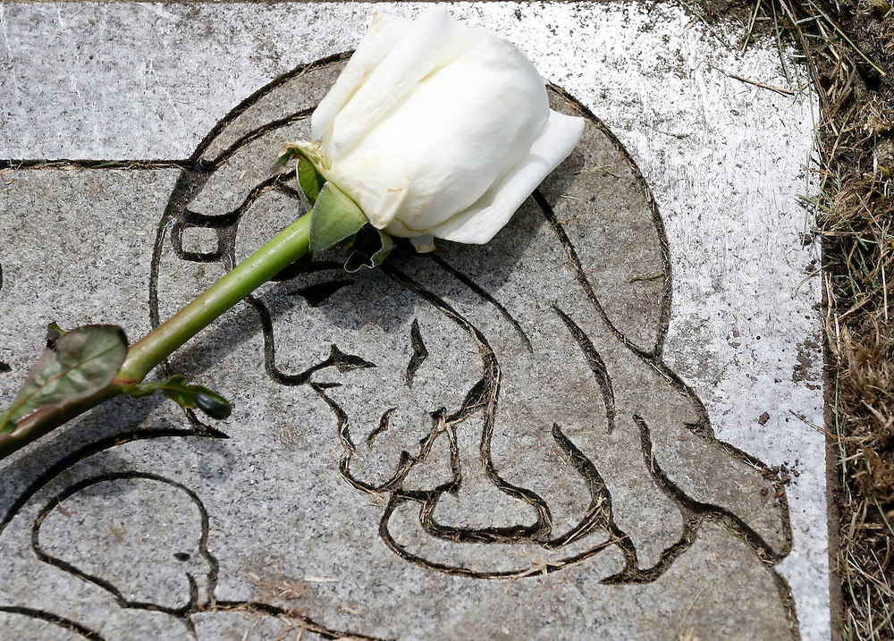 """A rose is laid on a headstone for one of the babies buried at All Saints Cemetery by a non-profit organization """"Rest in His Arms""""  in Des Plaines, Illinois, United States, June 19, 2015. They have provided funeral and burial services for 30 abandoned children over the last 10 years.   REUTERS/Jim Young"""
