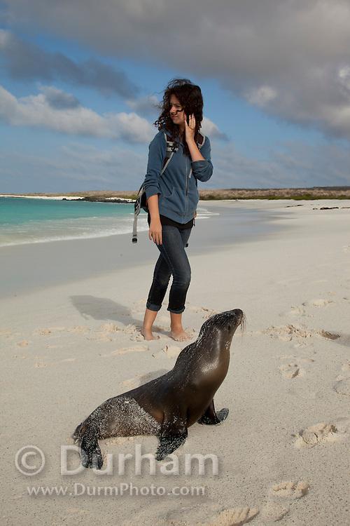 A young tourist nears a Galapagos sea lion(Zalophus californianus) on the beach of Espanola Island, Galapagos Archipelago - Ecuador. (fully released - 82010EXsP)