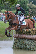 MJI MOUNT ECHO ridden by Angus Smales at Bramham International Horse Trials 2016 at  at Bramham Park, Bramham, United Kingdom on 11 June 2016. Photo by Mark P Doherty.
