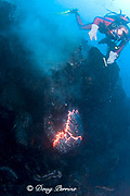 diver Bud Turpin observes pillow lava erupting underwater at ocean entry from Kilauea Volcano Hawaii Island ( the Big Island ) Hawaii U.S.A. ( Central Pacific Ocean ) MR 381