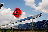 Environment - One of the World's Biggest Solar Plant