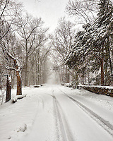 Road looking east, covered with snow. Four-wheel drive vehicles are out, but still waiting on the snow plows to do a second pass. Image taken with a Fuji X-T1 camera and 16 mm f/1.4 lens (ISO 200, 16 mm, f/8, 1/125 sec).