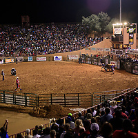 Wild Thing 25th Annual Championship Bull Riding competion at Red Rock Park, July 14.