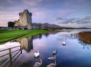 Swans float gently in peace in an early morning winter scene at Ross Castle, Killarney Ireland.<br /> Picture by Don MacMonagle -macmonagle.com