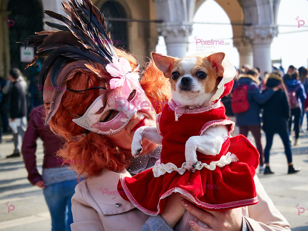 Venice, Italy - March 2, 2019  Dog pet and Owner dressed with costumes during Carnival of Venice Festivities