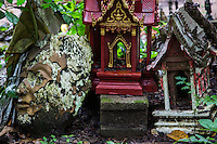 """Wat Umong or Wat Umong Suan Puthatham is unique in that the resident monks live in a natural setting, and even feed the deer that live in the area.  Adjacent to the temple compound is a Buddhist image """"cemetery"""" where unused, damaged Buddhist images can be thrown away, believed to be the best method of disposing of them."""