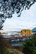 Fishing dock, boats, and the Meares Island mountain landscape at dawn, in British Columbia, Canada