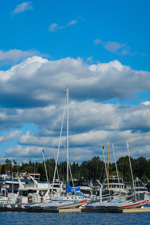 United States, Washington, Bellevue. Marina and sailboats on Lake Washington.