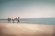 A young boy with enjoys his horse on a desolate Southern beach.