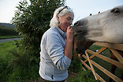 Woman feeds one of her horse a mint just outside Kilburn on the edge of the North York Moors. Yorkshire, England, UK. This is a farming area where rural living and the countryside is at the centre of life in this county.