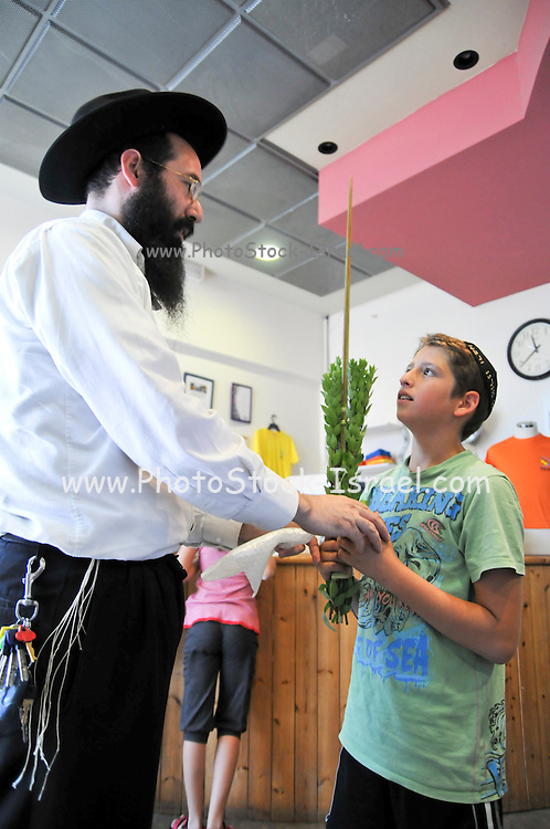 Interior of a Sukkah during Sukkoth Man and boy with the four species .