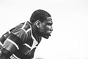 Chicago Sports Photographer Chris W. Pestel Montini Catholic High School Rugby
