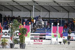 046 - Focus GLN - Lemmen Patrick (NED)<br /> 4 Jarige Finale Springen<br /> KWPN Paardendagen - Ermelo 2014<br /> © Dirk Caremans