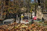 A woman prays at a grave in Rakowicki cemetery in Krakow, Poland 2019.