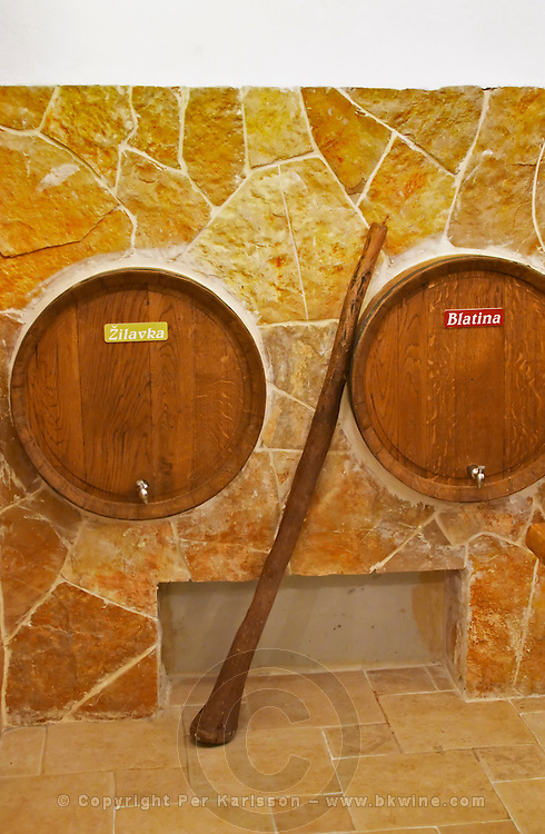 Two wine barrels in the winery restaurant with a big stick that used to be used for pushing down the cap submerging the floating grape skins and pips into the must. Pigeage. Podrum Vinoteka Sivric winery, Citluk, near Mostar. Federation Bosne i Hercegovine. Bosnia Herzegovina, Europe.