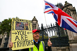 © Licensed to London News Pictures. 21/10/2019. London, UK. An anti-Brexit supporter with a placard is seen at the gates of The Houses of Parliament in Westminster. Photo credit: Dinendra Haria/LNP