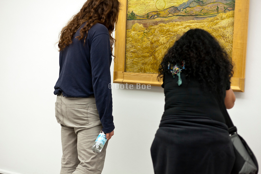 people looking at a Van Gogh painting at Kruller-Muller museum in Holland