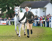 15/08/2013. Lorna Murphy with Lakeside Misty who won the 6 and 7 year old Mare at  the 90th Connemara Pony show in Clifden Co. Galway. Photo:Andrew Downes