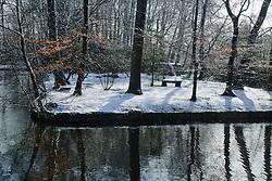 Trom Winter, koud, cold snow, sneeuw, winter, cold, wit, white