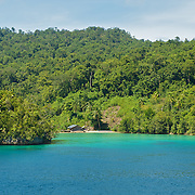Lonely bay surrounded by jungle