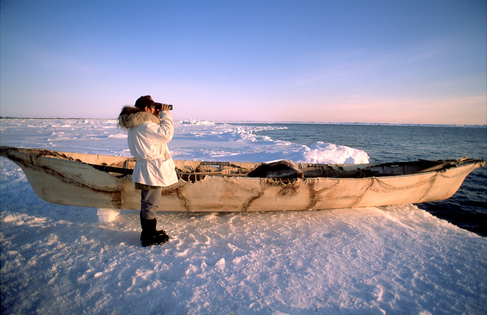 Native alaskan whaler keeping watch over the water for a bowhead whale from camp on the edge of the sea ice