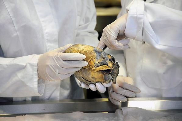 Nederland, Nijmegen, 1-3-2010Studenten medicijnen zijn in de snijzaal van anatomie bezig met een practicum. Hier bestuderen zij een menselijk hart.Foto: Flip Franssen
