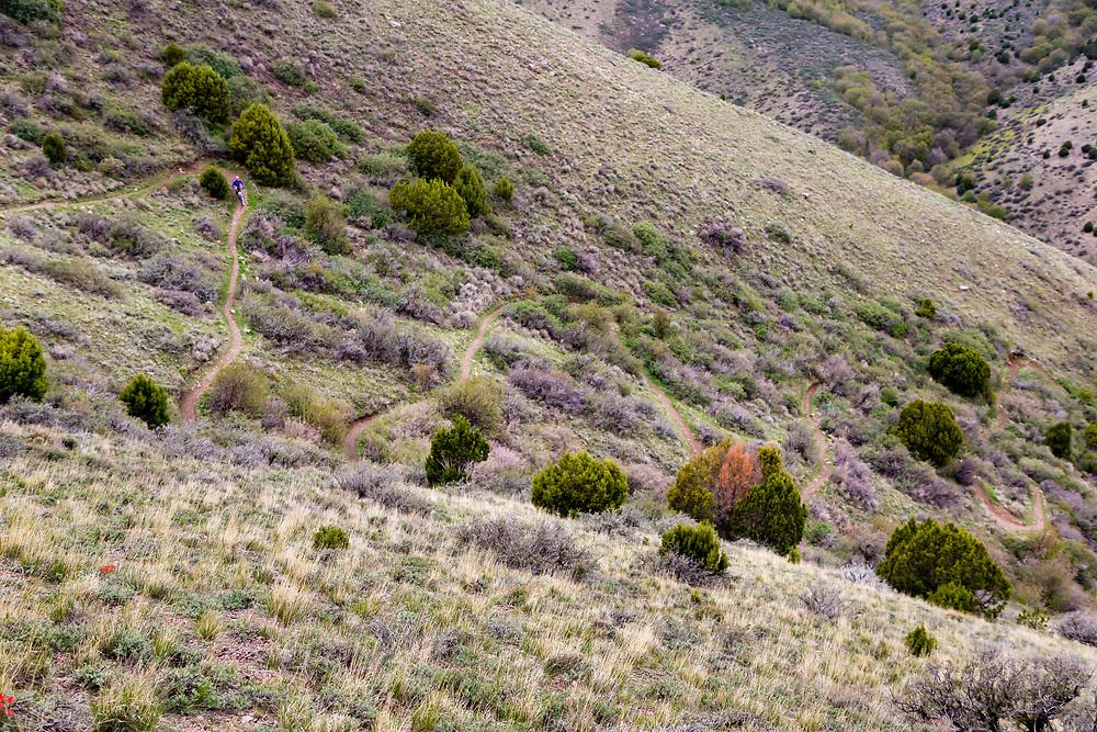Heather Goodrich riding Singletrack switchbacks in early spring near Pocatello, Idaho.