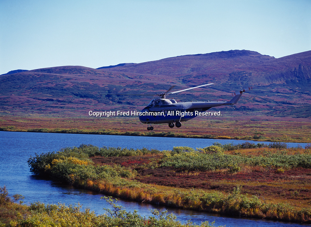 Crystal Creek Lodge's Sikorksy S-55 helicopter flying over the Negukthlik River, Togiak National Wildlife Refuge, Alaska.