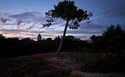 Zonsondergang aan de kust bij  La Guérinière op het eiland  Noirmoutier-en-L'ile in Frankrijk  -  Sunset at the coast of  La Guérinière on the island  Noirmoutier-en-L'ile in France