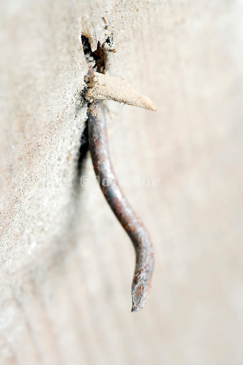 extreme close up of a rusty nail in a wooden plank
