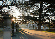 Sunrise along the main avenue at Chiswick House on a frosty February morning.  Chiswick, London, UK