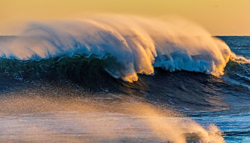 Beavertail Waves