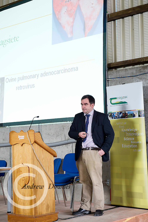 """Spinning at Sheep 2012 """"The Way Forward""""  at Teagasc, Mellows Campus, Athenry, Co. Galway Photo: Andrew Downes.."""