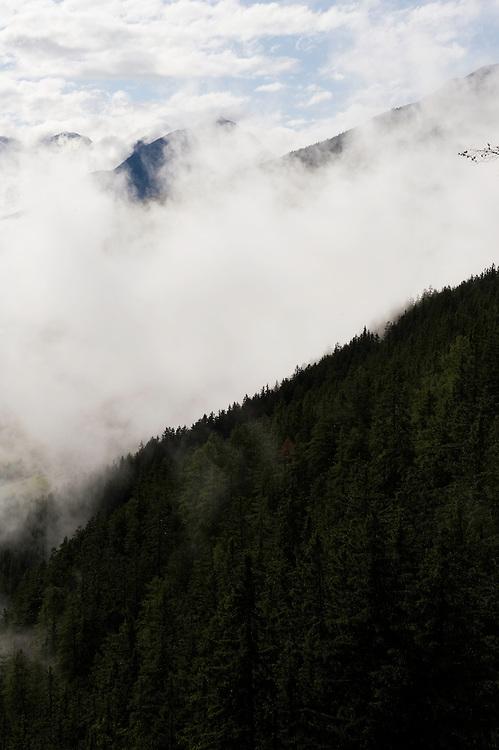 IFTE-NB-007643; Niall Benvie; panorama element; View into the valley around Fliess from Kaunergrat visitor's centre; Austria; Europe; Tirol; vertical; grey blue; forest woodland; 2008; July; summer; fog mist rain cloud; Wild Wonders of Europe Naturpark Kaunergrat