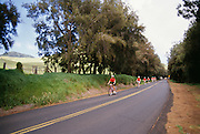 Biking, Kohala mountain road, Island of Hawaii