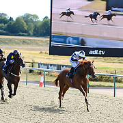 Lingfield 4th August