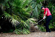 May 13, 2018; Ponte Vedra Beach, FL, USA; Tiger Woods plays from the pine straw in the second hole during the final round of The Players Championship golf tournament at TPC Sawgrass - Stadium Course. Mandatory Credit: Peter Casey-USA TODAY Sports
